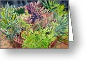 Succulents Greeting Cards - Potted Succulents Greeting Card by Donald Maier