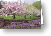 Cindy Longhini Greeting Cards - Powder Hill Blossoms Greeting Card by Cindy Lee Longhini
