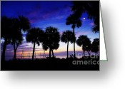 Cabbage Palm Trees Greeting Cards - Powering Up the Day Greeting Card by Don Youngclaus