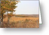 Autumn Scenes Greeting Cards - Prairie Autumn Greeting Card by Jim Sauchyn