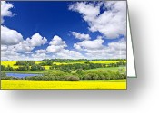 Farming  Greeting Cards - Prairie panorama in Saskatchewan Greeting Card by Elena Elisseeva