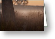 Prairie Native Greeting Cards - Prairie Pre Dawn Greeting Card by Steve Gadomski