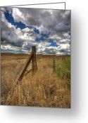 Barbed Wire Greeting Cards - Prarie Sky Greeting Card by Peter Tellone