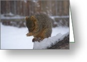 Winter Scenes Photo Greeting Cards - Prayer Time Greeting Card by Ernie Echols