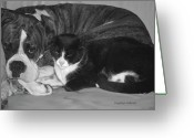 Buddies Greeting Cards - Precious Pals Greeting Card by DigiArt Diaries by Vicky Browning