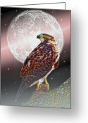 "\""sunset Photography\\\"" Greeting Cards - Predator Greeting Card by Thomas York"