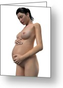 Swollen Greeting Cards - Pregnant Woman, Artwork Greeting Card by Sciepro