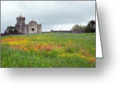 Texas Wildflowers Greeting Cards - Presidio La Bahia Greeting Card by Sue  Kemp