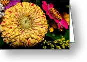 Babys Greeting Cards - Pretty Flowers Greeting Card by Kelly Reber