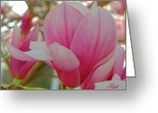 Dogwood Blossom Greeting Cards - Pretty in Pink in Spring Greeting Card by Christine Belt