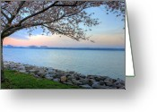 Alexandria Greeting Cards - Pretty Potomac Greeting Card by JC Findley