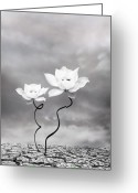 Lotus Greeting Cards - Prevail Greeting Card by Photodream Art