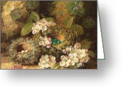 Signature Greeting Cards - Primroses and Birds Nests on a Mossy Bank Greeting Card by Oliver Clare