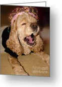 Lazy Dogs Greeting Cards - Princess Lazy Paws Greeting Card by Laura Brightwood
