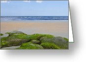 Spume Greeting Cards - Pristine Beach Greeting Card by John Zawacki
