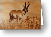 Camouflaged Painting Greeting Cards - Pronghorn Antelope Greeting Card by Cindy Wright