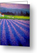 Cards Gallery Greeting Cards - Provence Greeting Card by John  Nolan