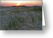 Color Greeting Cards - Provinceland Dunes Greeting Card by Juergen Roth
