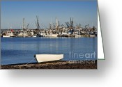 Row Boat Greeting Cards - Provincetown Harbor Greeting Card by John Greim