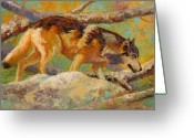 Vivid Greeting Cards - Prowler - Grey Wolf Greeting Card by Marion Rose
