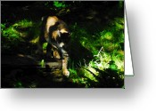 Animal Hunting Greeting Cards - Prowling Huntress Greeting Card by David Lee Thompson