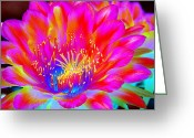 Night Blooming Greeting Cards - Psychedelic Pink Flower Greeting Card by Richard Henne