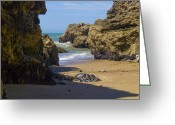 Sea Scape  Greeting Cards - Pt Reyes National Seashore Greeting Card by Bill Gallagher