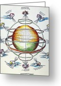 Ptolemaic Greeting Cards - Ptolemaic Universe, 1525 Greeting Card by Granger