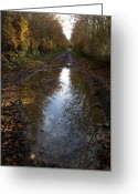 Puddle Greeting Cards - Puddle On A Path Greeting Card by Dr Keith Wheeler