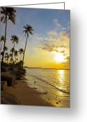 Tropical Island Greeting Cards - Puerto Rico Sunset Greeting Card by Stephen Anderson