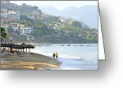 Beach Scenery Greeting Cards - Puerto Vallarta beach Greeting Card by Elena Elisseeva