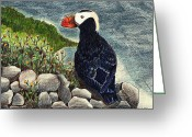 Puffin Mixed Media Greeting Cards - Puffin Greeting Card by Wendy McKennon