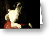 Dog Photographs Greeting Cards - Pug Silhouette Greeting Card by D Peers