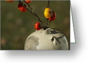 Crocks Photo Greeting Cards - Pumpkin on a Stick in an Old Primitive Moonshine Jug Greeting Card by Kathy Clark