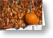 Grapevines Greeting Cards - Pumpkin on white fence post Greeting Card by Garry Gay