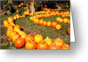 Pumpkin Farm Greeting Cards - Pumpkin Patch Path Greeting Card by Carol Groenen