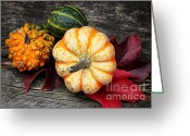 Postwork Greeting Cards - Pumpkin Still Life Greeting Card by Jutta Maria Pusl