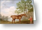Feeding Painting Greeting Cards - Pumpkin with a Stable-Lad Greeting Card by George Stubbs