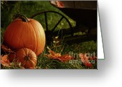 Outdoor Still Life Greeting Cards - Pumpkins in the grass Greeting Card by Sandra Cunningham