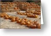 Farmers Markets Greeting Cards - Pumpkins on Bales Greeting Card by Carol Groenen
