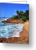 Puerto Rico Greeting Cards - Punta Morillos Greeting Card by Thomas R Fletcher