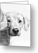 Dog Prints Drawings Greeting Cards - Puppies and Wellies Greeting Card by Sheona Hamilton-Grant
