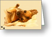 Paws Digital Art Greeting Cards - Puppy Love Greeting Card by Amanda Vouglas