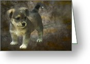 Brown Dogs Digital Art Greeting Cards - Puppy Greeting Card by Svetlana Sewell