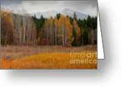 Snow Capped Photo Greeting Cards - Purcell Gold Greeting Card by Idaho Scenic Images Linda Lantzy