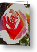Stunner Greeting Cards - Pure Elegence Greeting Card by Ruth Edward Anderson
