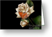 Sympathy Greeting Cards - Purity Greeting Card by Cheryl Young