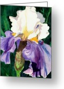 Watercolor Greeting Cards - Purple and White Iris Greeting Card by Janis Grau