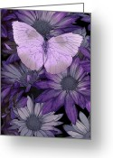 Colorful Photography Painting Greeting Cards - Purple Butterfly Greeting Card by JQ Licensing