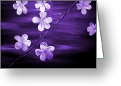 Silver Moonlight Greeting Cards - Purple Cherry Blossom Greeting Card by Mark Moore